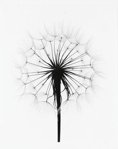 friday pin love | pinspiration